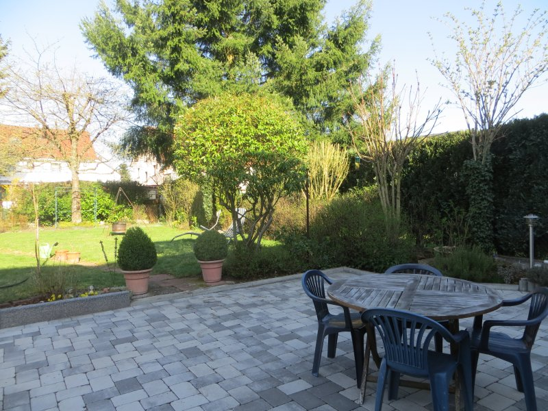 Cour jardin avec barbecue