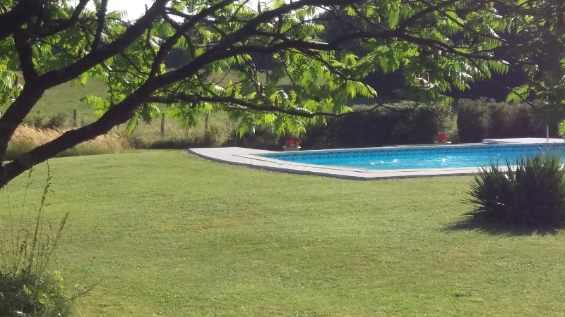 The Field Pool; two swimming pools to choose from, (and no children!)