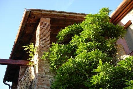 Agriturismo Antico Giuncheto: appartamento Mary, holiday rental in Villa