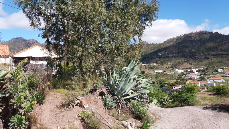 Big house with mountain view, holiday rental in Ayacata