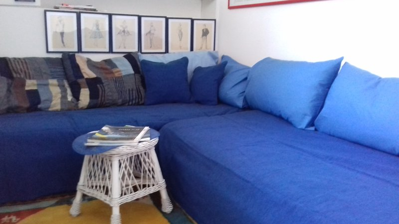 Living room(two sinle beds)