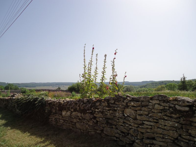 The outskirts of the village.