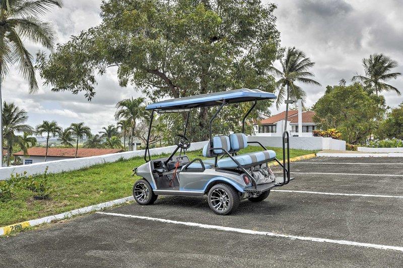 Vous pourrez utiliser librement le chariot de golf.