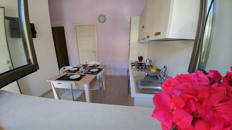 Nuovissimi appartamenti a 50 metri dal mare, vacation rental in Zambrone