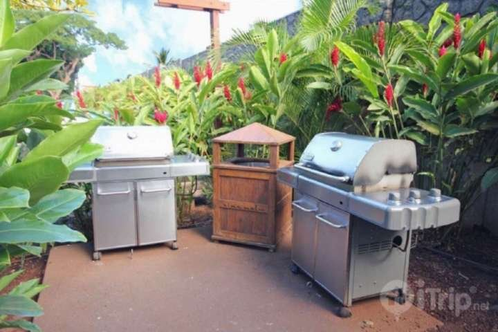 Community bbq's located on the grounds of Aina Nalu