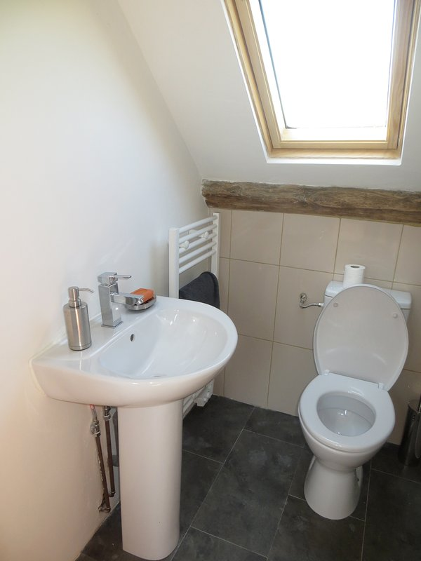Ensuite bathroom adjacent to loft bedroom