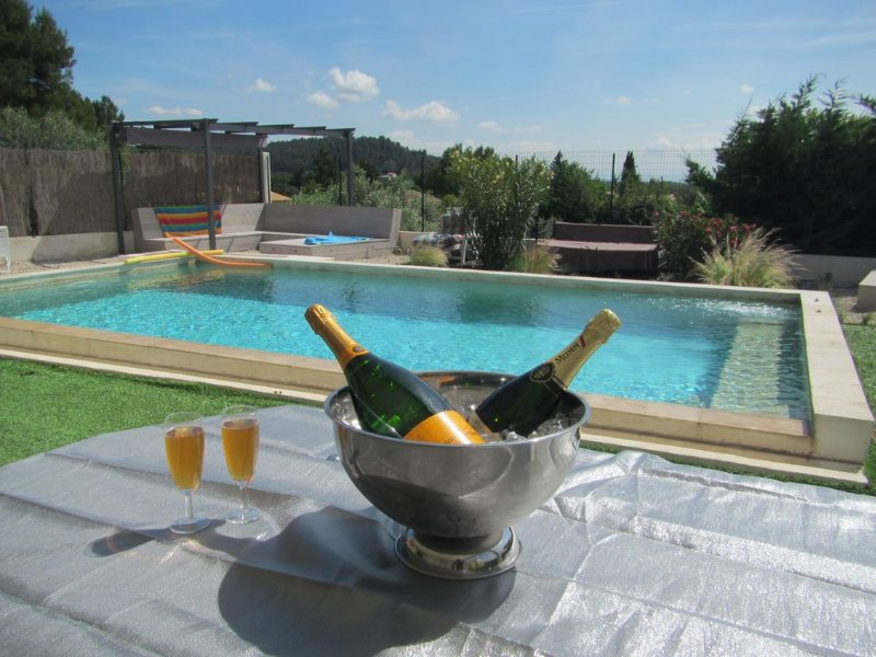 Beautiful studio with shared pool, holiday rental in Villeneuve-les-Avignon