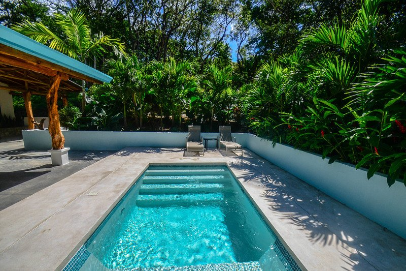 Relax in your secluded private dipping pool, surrounded by lush gardens.