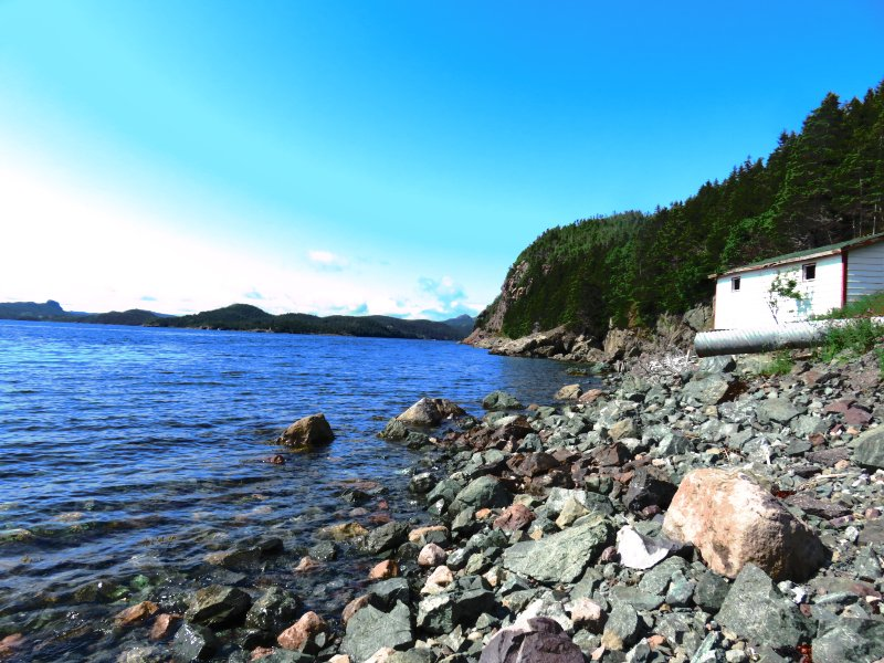 Seaside retreat, holiday rental in Holyrood