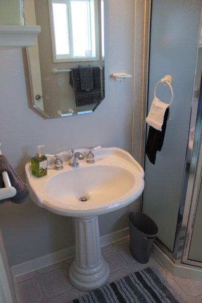 Upper meester bad biedt wastafel, douche en toilet