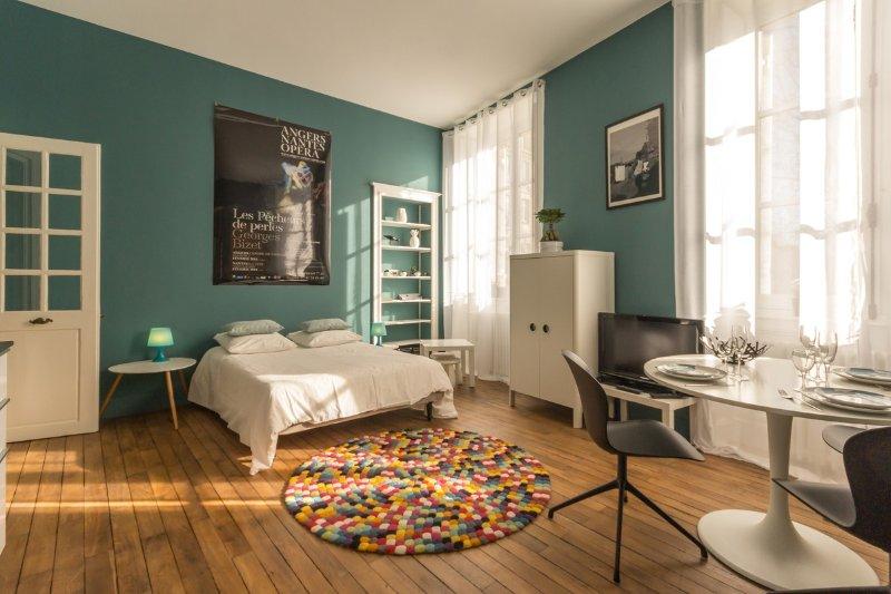 L'Antichambre de la Duchesse / quartier historique piétonnier, vacation rental in Nantes