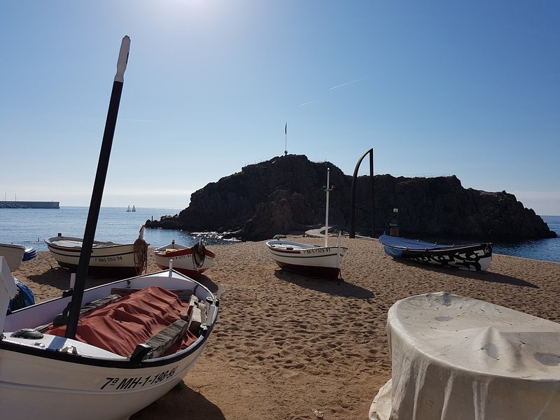 Apartamento Lotus 100 mts. del mar, vacation rental in Blanes
