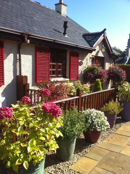 Bramble cottage in summer.
