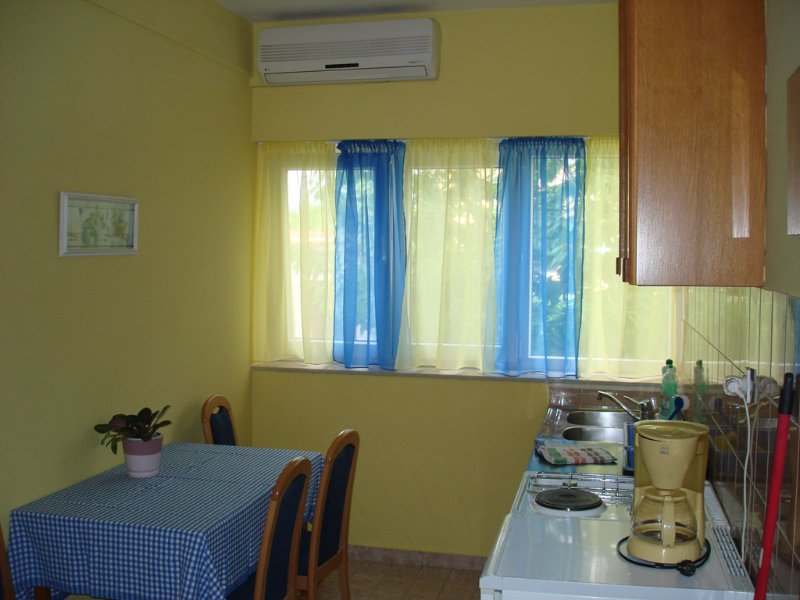 A3(4+1): kitchen and dining room