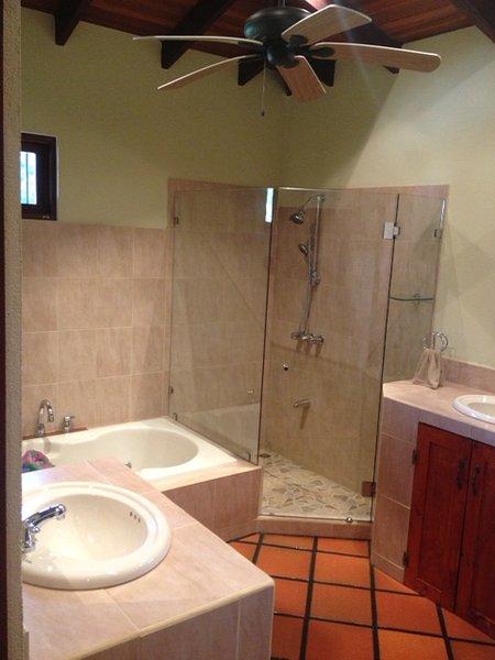 Baño principal - bañera de hidromasaje y vestidor