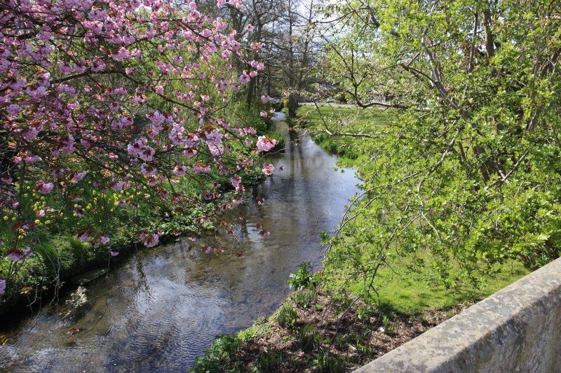 Un picnic en el río o es hora de alimentar a los patos?