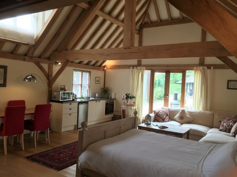 Beautiful barn conversion holiday rental, New Forest, vacation rental in Martin