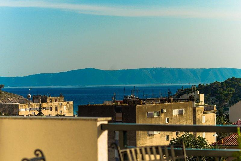 A1 (4 + 2): vue de la terrasse (maison et environs)