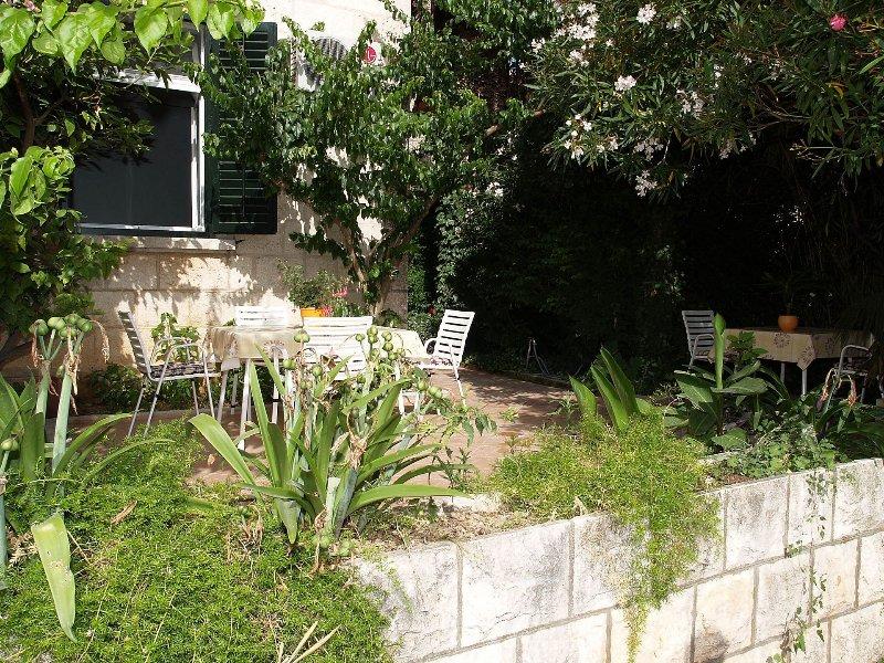 vegetation (house and surroundings)