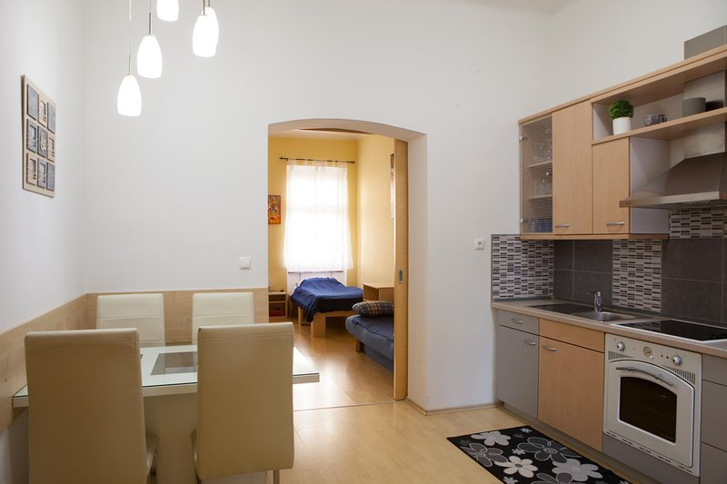 Central Apartment Viktorija Tour As - free WiFi and AC, holiday rental in Ljubljana