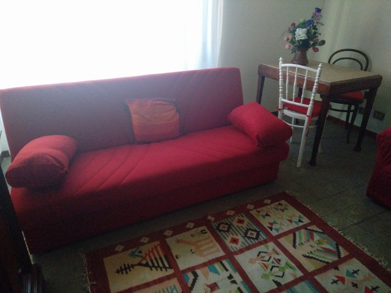 Living room: sofa bed