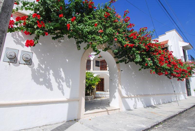 Los colores vibrantes de la floración derrame Bougainvillea sobre el muro de privacidad rodean Villa Caballito
