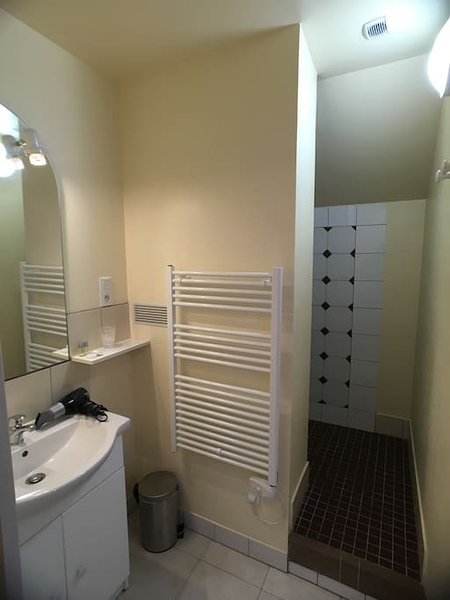 private bathroom with walk-in shower and separate toilet