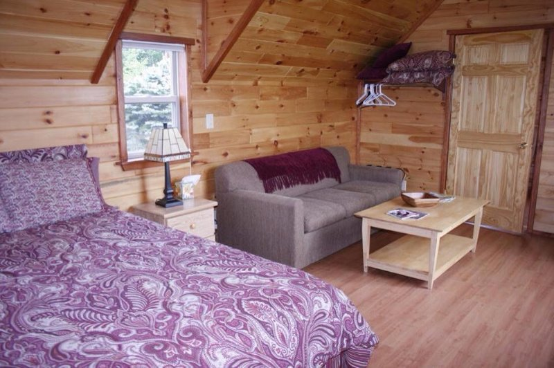 Interior of a Handicap Accessible Cabin with Queen Bed and Sleeper Sofa