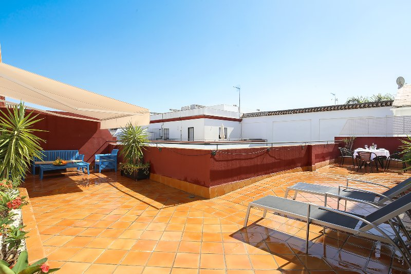 Alameda Terrace 2. One bedroom apartment with large private terrace, holiday rental in Guillena