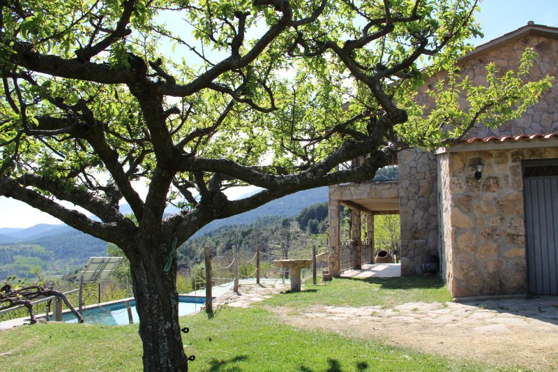 El Pinarejo, holiday rental in Province of Avila
