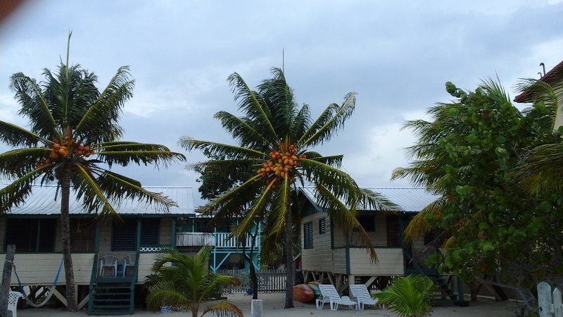 Coconut Cottage, vakantiewoning in Stann Creek
