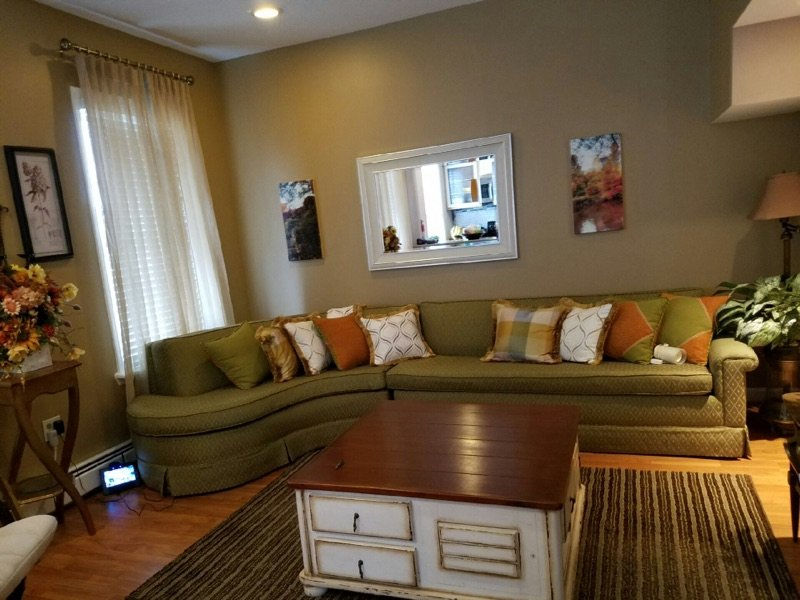 Bright and Sunny living room with plenty of seating and a pull out bed for 2