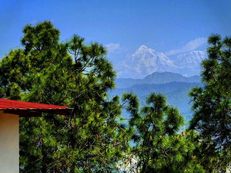 Sharanam-a paradise Himalayan getaway 2BHK Villa, Ranikhet, vacation rental in Almora District