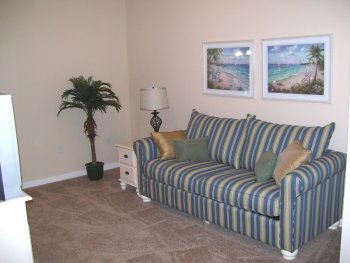 Couch,Furniture,Palm Tree,Tree,Indoors