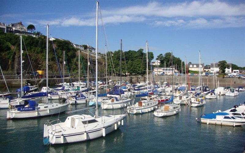 Lively harbour in Saundersfoot with trips leaving daily in the summer months