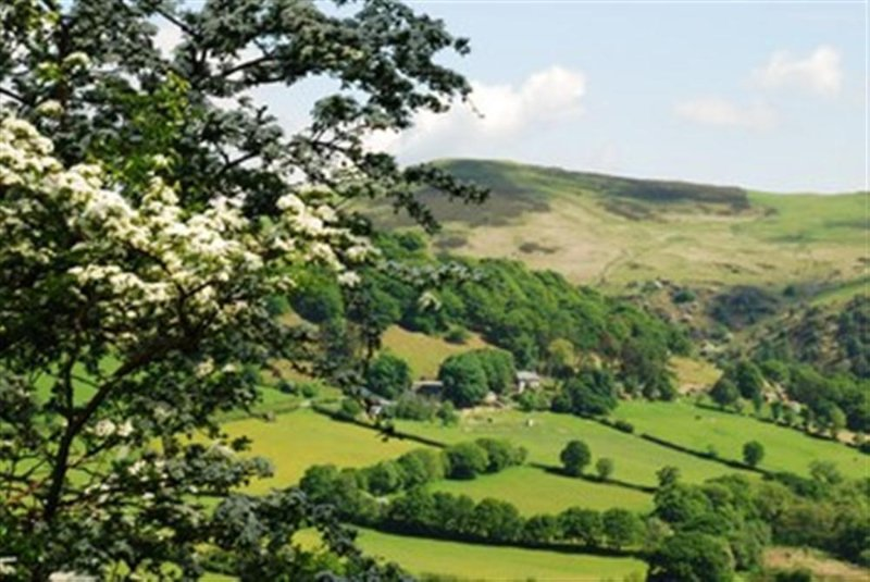 The farm is located in the beautiful Mid Wales countryside, north of Rhayader