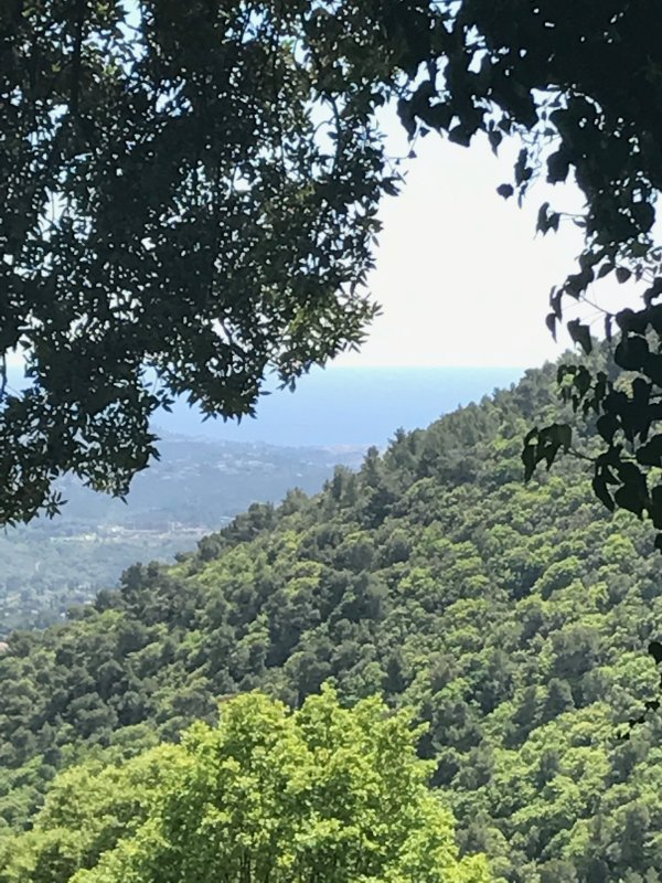 Hermosa vista!