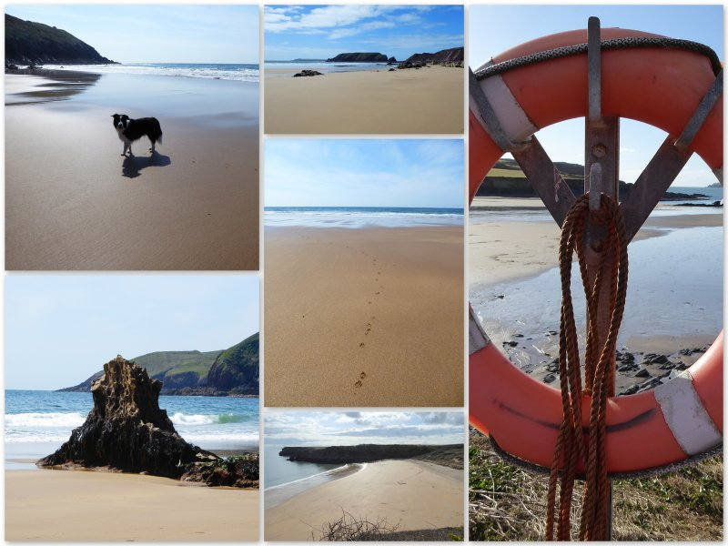With over 60 beaches in Pembrokeshire you are spoilt for choice.