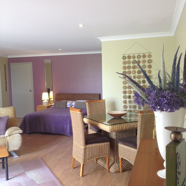 Front studio overlooks beautiful park Studio Apt. has 1 Queen bed & sofa bed most suited for couples