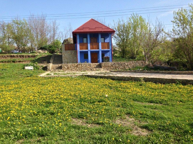 la 'Vila Serenada' vous invite à découvrir la culture locale moldave, vacation rental in Rezina District