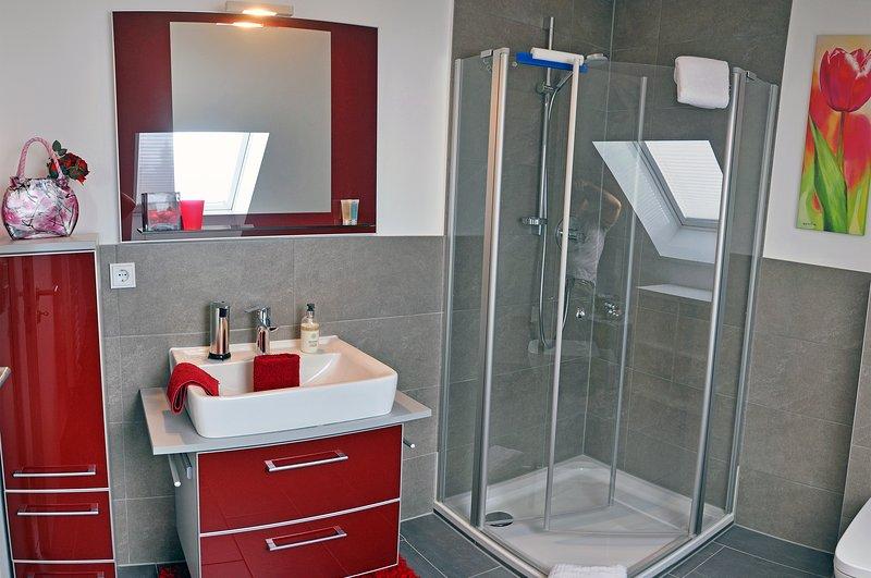 Frankfurt Bed and Breakfast - single room - bathroom with shower, sink, cupboard