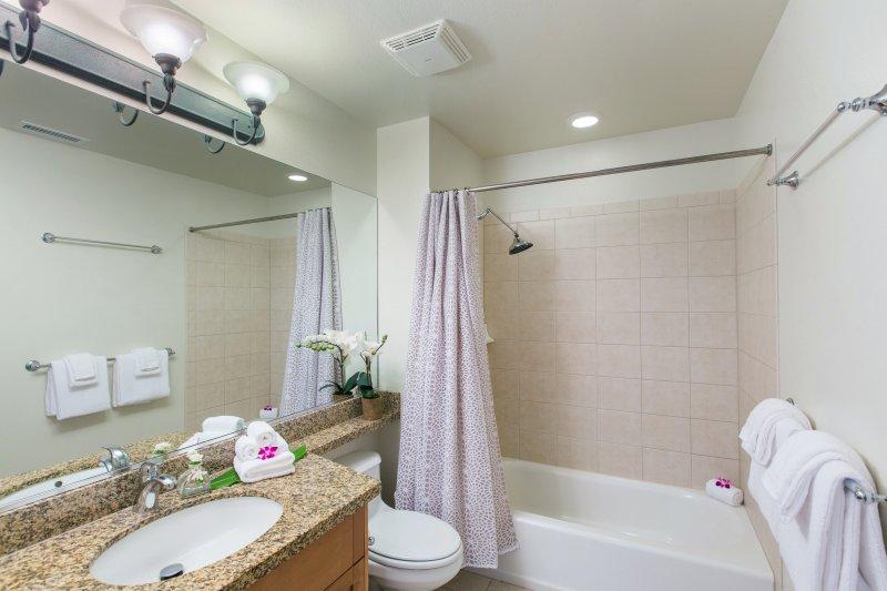 Second floor full bathroom for the twin bedroom and queen bedroom.