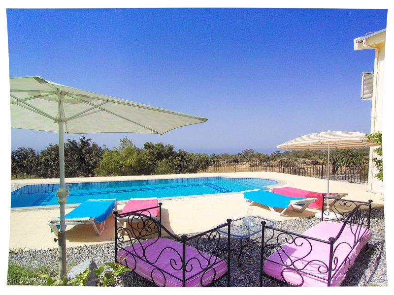 Pool terrace -  8 x 4 meter pool with amazing views, and orange trees
