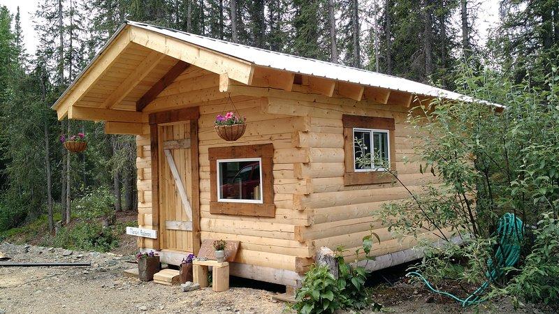 Blackburn Cabins: John Barrett Cabin, location de vacances à Parc national et réserve de Wrangell - Saint-Elias
