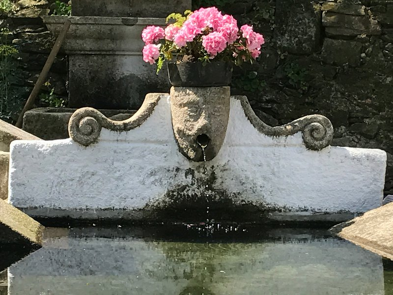 A fountain in the grounds