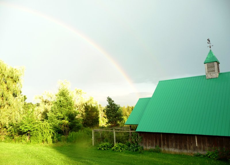 rainbow over our barn, enjoy strolling our organic fruit farm and vineyard