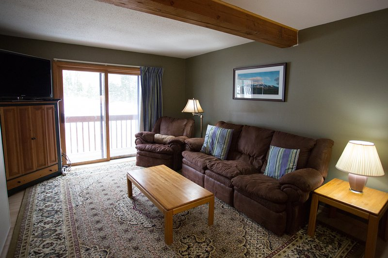 Living Area with Murphy Bed