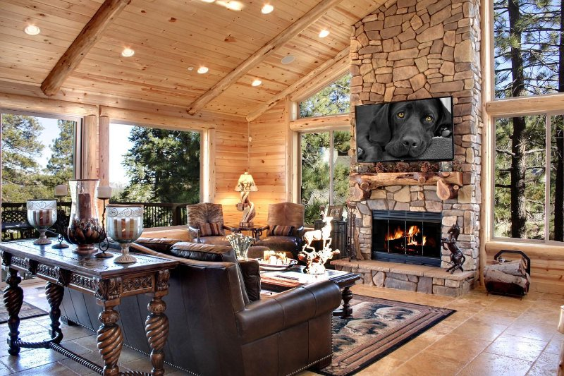 Great room w/ fireplace & Open view  - See our Website for More Photos