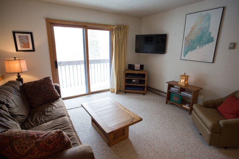 Living Area with Sleep Sofa