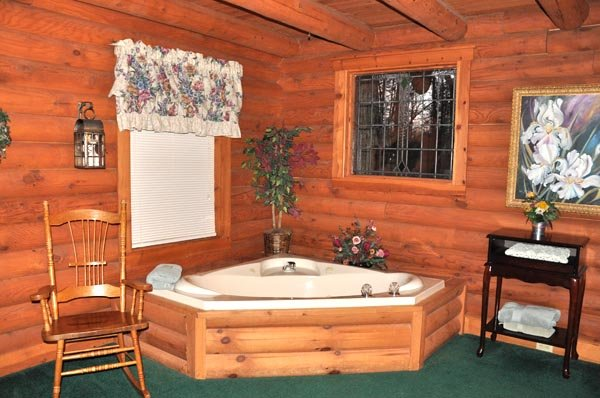 Little Wing, vacation rental in Gatlinburg